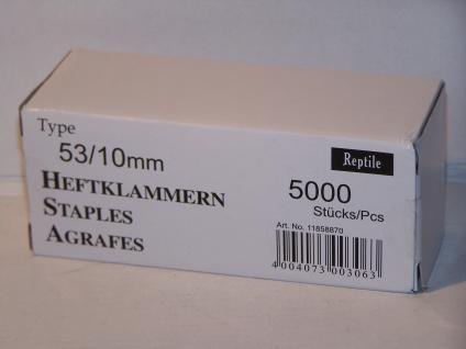 Tackerklammern Typ 53/530 10mm 5000 Stück von Reptile-Rapid