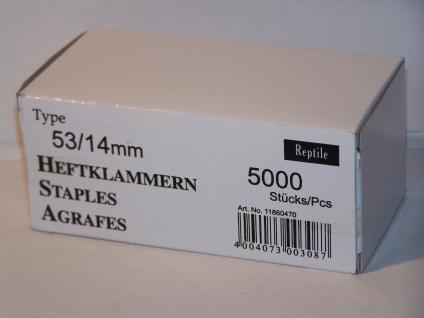 Tackerklammern Typ 53/530 14mm 5000 Stück von Reptile-Rapid - Vorschau