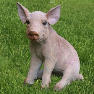 Schwein Ferkel sitzend Schweinchen H.23cm Garten Figur Bauernhof lebensecht 7854