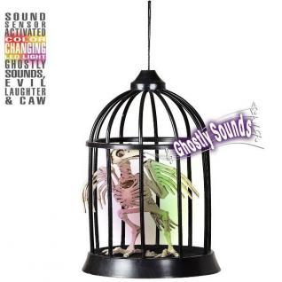 Raben Skelett Deko mit Sound und Licht im Käfig 34 cm Halloween Dekoration