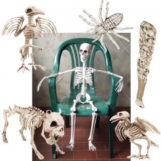 Horror Halloween SKELETT DEKO Krähen- Spinnen- Hundeskelett Schädel-Knüppel Tod