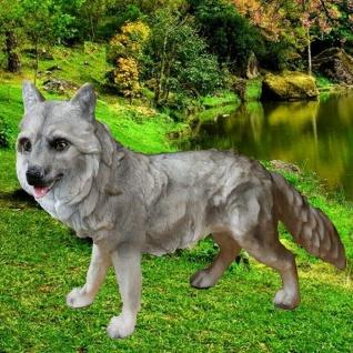 Gartenfigur WOLF Wolfswelpe stehend 38cm Haus & Garten Deko Figur lebensecht 988