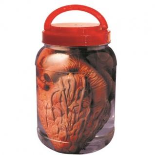 HERZ IM GLAS - Labor Präparat Halloween Grusel Deko ORGANE im GLAS Schocker