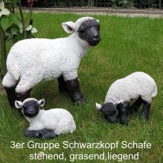 WOW 3er Set Gartenfigur Lamm Schaf Lämmer Haus Garten Deko lebensechte Figur
