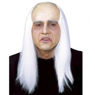 PERÜCKE ZOMBIE Halloween Herren Perrücke Karneval Fasching Wig #8392
