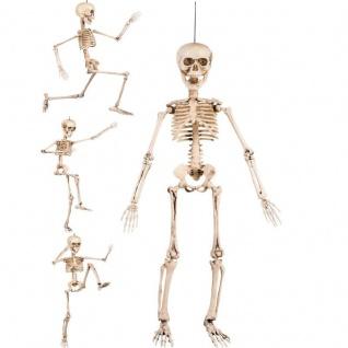 Skeleton Skelett beweglich 50 cm Karneval Fasching Halloween Grusel Deko