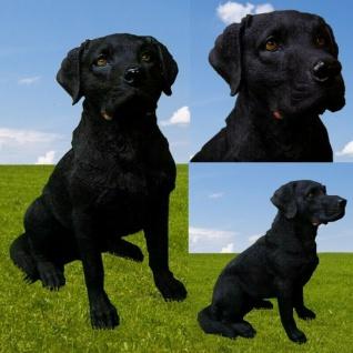 Figur Hund LABRADOR SITZEND Haus & Garten Deko 2274 lebensecht Tierfigur