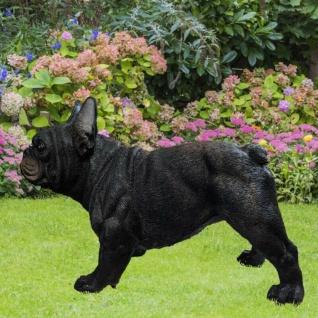 Französische Bulldogge Hund Gartenfigur schwarz 37.224 Garten lebensecht Figur
