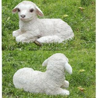 Gartenfigur Lamm Lämmchen Schaf lebensecht Garten Deko Figur #8462