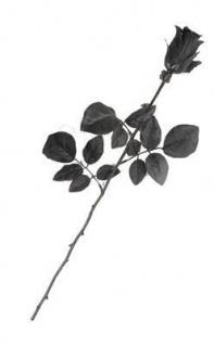 HALLOWEEN Schwarze Rose ca.55cm für PARTY DEKORATION 994475