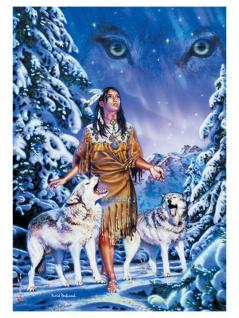 David Penfound Posterfahne Wolf Aurora
