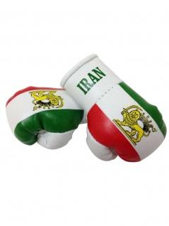 Kleine Boxhandschuhe Iran