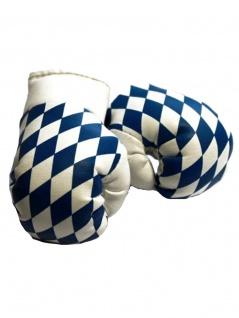 Kleine Boxhandschuhe Bayern