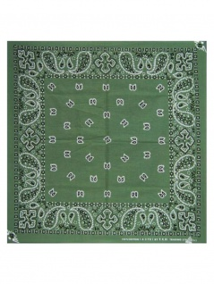 Bandana Paisley Ground