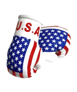Kleine Boxhandschuhe USA