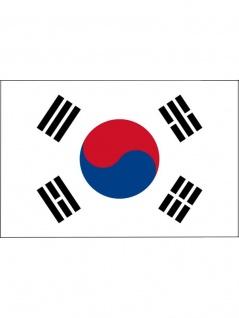 Fahne S?d Korea