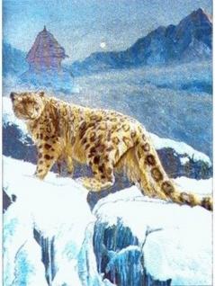 Alu Bild Leopard