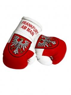 Kleine Boxhandschuhe Frankfurt am Main