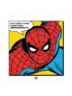 Poster Art Print Spider Man