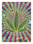 3 Droge Postkarten