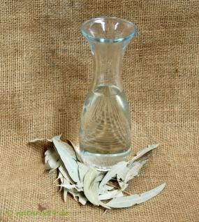 Naturix24 Eucalyptusöl ätherisch 100 ml