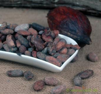 Naturix24 Kakaobohnen Ecuador ASS 1 kg