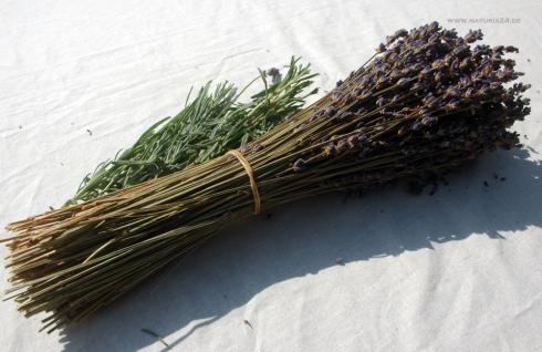 Naturix24 Lavendelstrauß klein 1 Stück