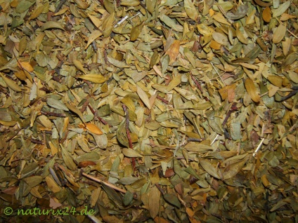 Naturix24 Bärentraubenblätter ganz 1 kg