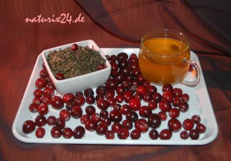 Naturix24 Grüner Tee Cranberry 1 kg