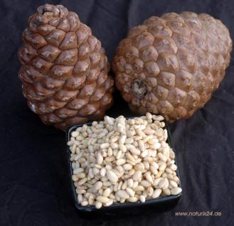 Naturix24 Pinienkerne ganz 1 kg