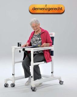 5 Tage versandfertig: Gehwagen (GW 120) Gehhilfe Gehtrainer kippsicher demenzgerecht