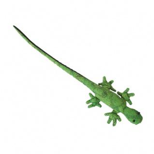 Sandtier Gecko Langschwanz
