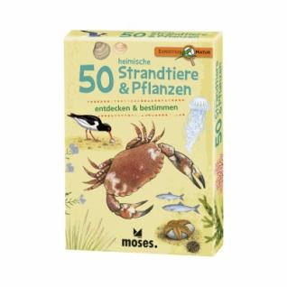 Expedition Natur - 50 heimische Strandtiere & Pflanzen