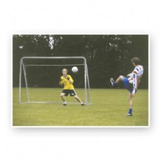Fußballtor - 300x205x120cm