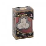 Cast Puzzle Hexagon - Level 4