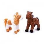 Pferde - Penny und Molly
