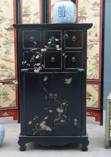 Chinesischer Schrank aus tadellosem Holz mit traditioneller Bemalung