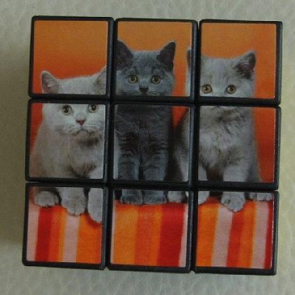 Katzen - Würfel zum Knobeln - Vorschau 1