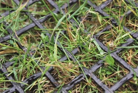 Huck Rasenschutz Gittermatte Fallschutz Rasenschutzmatte je 20 m²