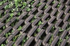 Huck Rasenschutzmatte für Schaukeln Fallschutz je Stück 1, 35 m²