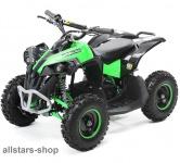 Actionbikes Kinderauto Elektro-Quad Reneblade 1000 W Pocketquad schwarz-grün