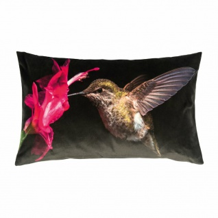 pad Kissenhülle Colibri pink 30 x 60 cm Vogel-Motiv Blume 100% Polyester Velour