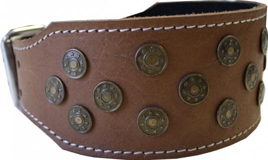 Hundehalsband aus echtem Leder 45-54cm in braun - Vorschau 2