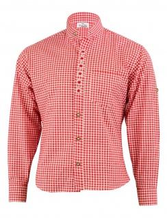 GermanWear Trachtenhemd mit Edelweiß-Stickerei stehkragen 100% Baumwolle - Vorschau 2