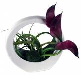 Kunstblume mit Schale, Deko, Seidenblume, Blumen, künstliche Blume, Kunstpflanze B1009