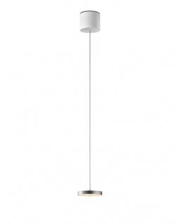 Oligo Decent LED Pendelleuchte mit unsichtbarer Höhenverstellung 1-flammig