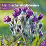 Heimische Wildblumen 30x30cm 2015 Ackermann Kunstverlag