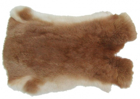 Kaninchenfelle fuchsrot naturfarben, ca. 30x30 cm, Felle vom Kaninchen mit se...