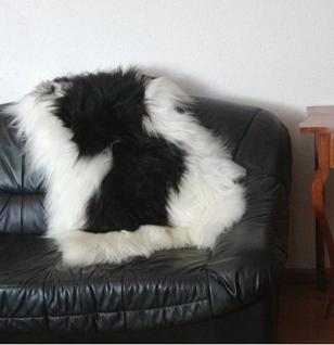 große wuschlige Nordlandschnuckenfelle schwarz-weiß, Haarlänge ca. 15 cm, ca. 120 cm