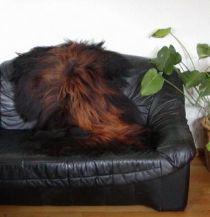 langhaariges Nordlandschnuckenfell schwarz natur, geflammte Spitzen, seidiges Wollvlies, ca. 115x75 cm, Haarlänge ca. 15 cm